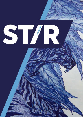 Stir Magazine Issue 2 Cover